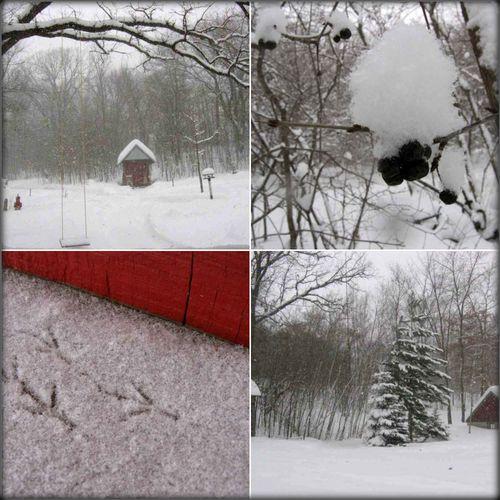 Snowday210
